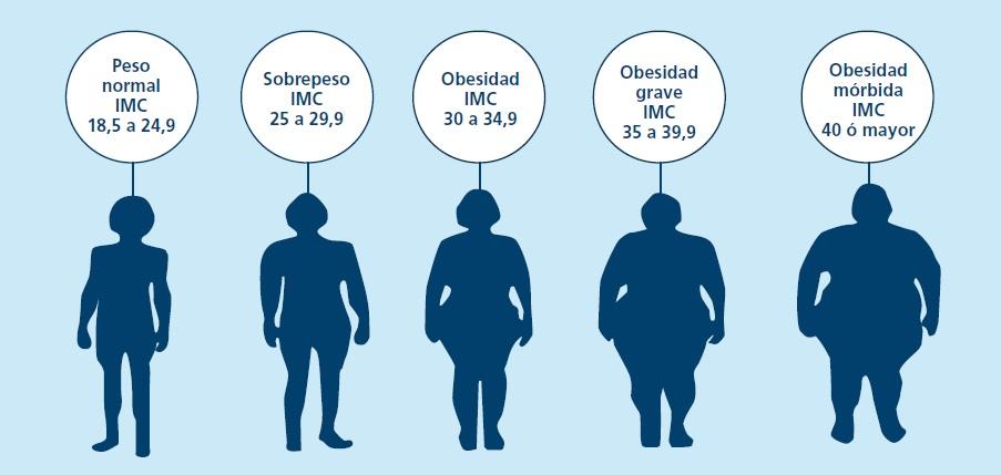 Receta para bajar de peso en dos semanas cortan largo